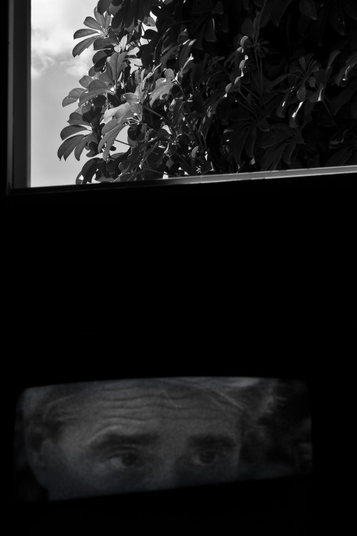 Os olhos são janelas | Atibaia | Junior Amojr