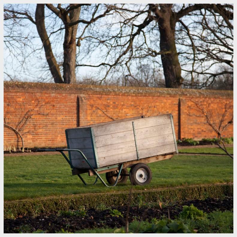 back garden  | Richmond  |  R.Cambusano