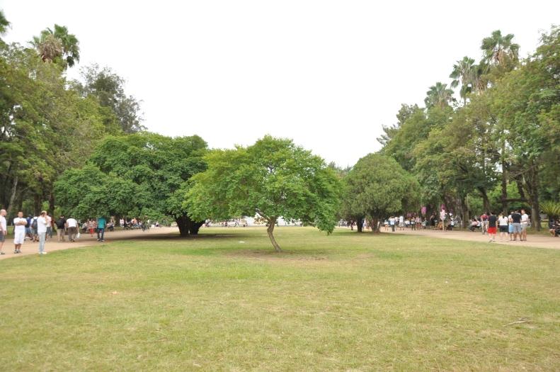 arranjos paisagísticos | Porto Alegre \ Gabriela Canale