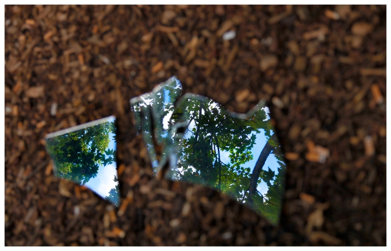 short form for broken nature  | London  | R.Cambusano
