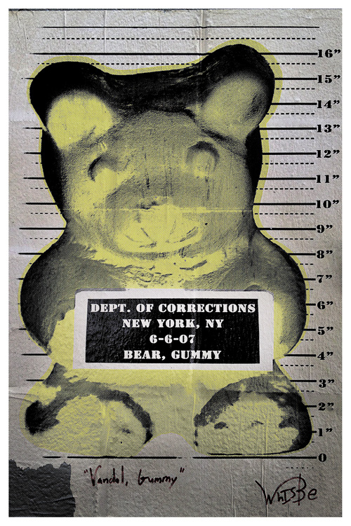 Have you seen this Bear? (Mug shot) | New York | Jaime Scatena