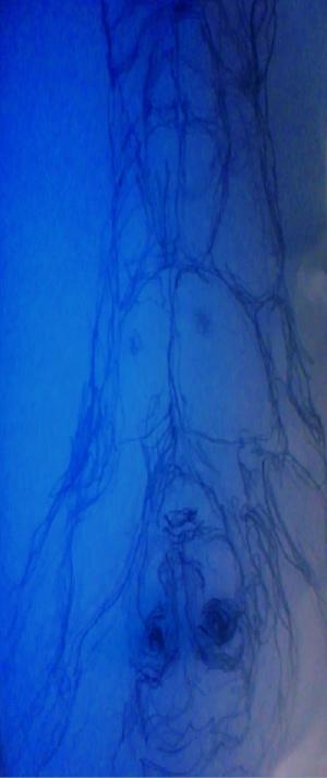 blue diver | Curitiba | Ygor Raduy