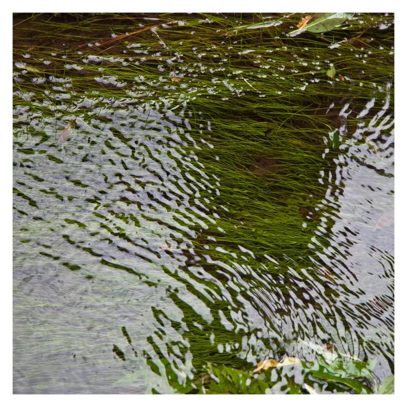 Stream is like a dream 1 | London | r.cambusano