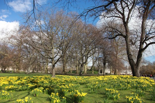 Mon parc jaune | London | R.Cambusano