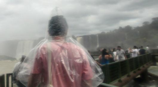Passantes aquáticos | Foz do Iguaçu | Gabriela Canale